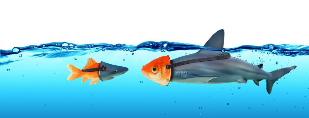 Ein Fisch mit einer Haimaske und ein Hai mit einer Fischmaske fragen sich ist MLM Betrug?